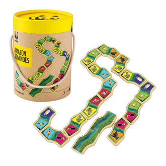 Picture of Amazon Domino Game